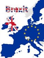 Le Brexit : le prix de l'incertitude